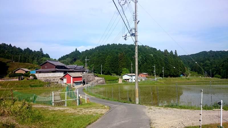 ロードバイクと奈良