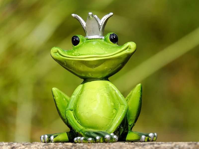 【カエル】クラシックレースE3 BinckBankの公式ポスターがwww【どんな判断だよ】