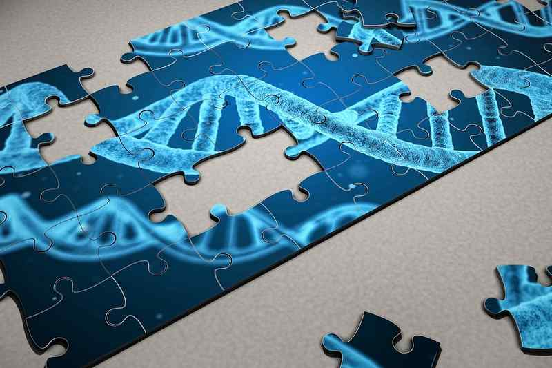 遺伝子ドーピングと検査手法「リキッドバイオプシー」とは?東京五輪で革新的ドーピング検査法が採用。