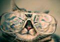キャットアイ(CAT EYE)のサイコンやライト