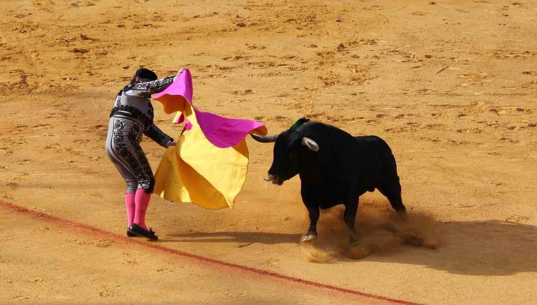 Manuela FundaciónがチームCCCまたはアスタナのスポンサーとなる可能性