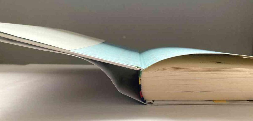 ピーター・サガンの自伝本「My World」